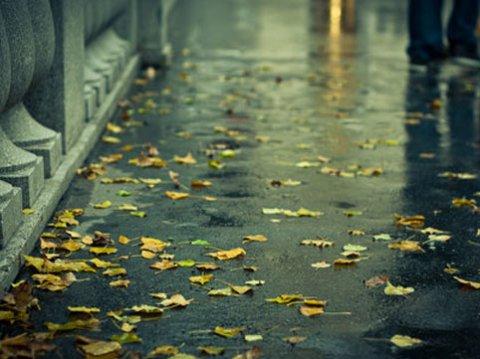 Şimşək çaxacaq, yağış yağacaq — Bu günün havası açıqlandı